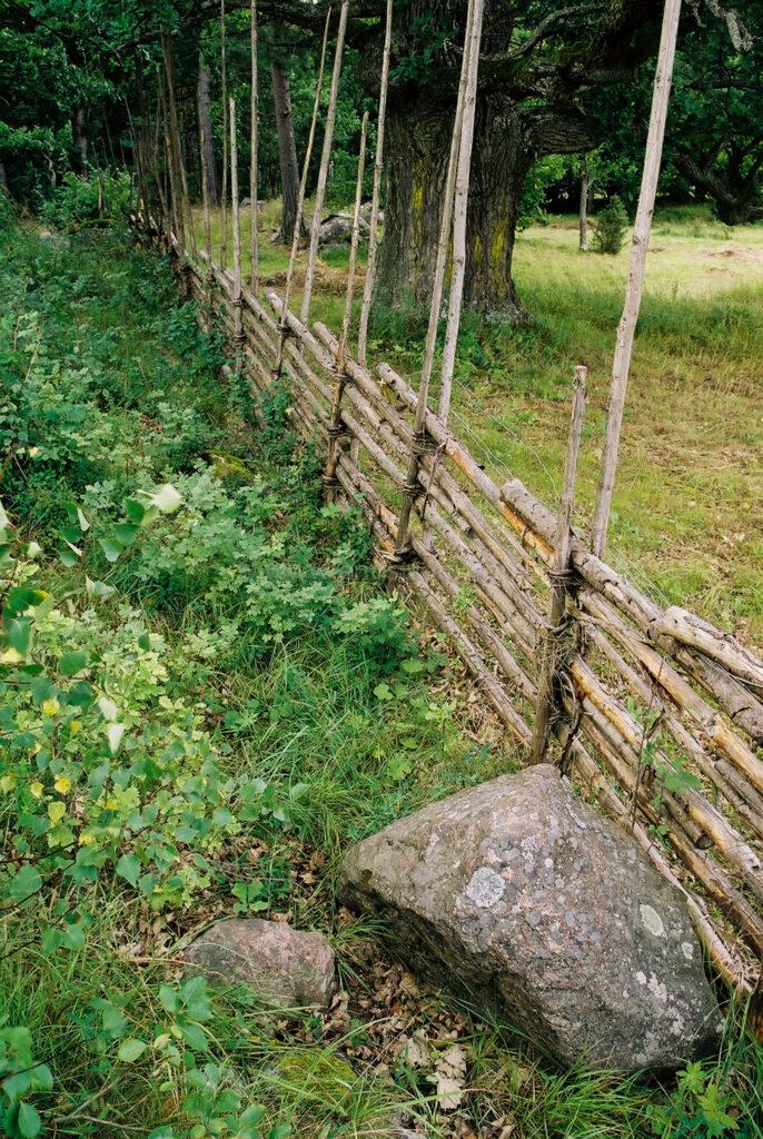 JE0109_28, Gärdesgård vid betesmark, Jonas Engström