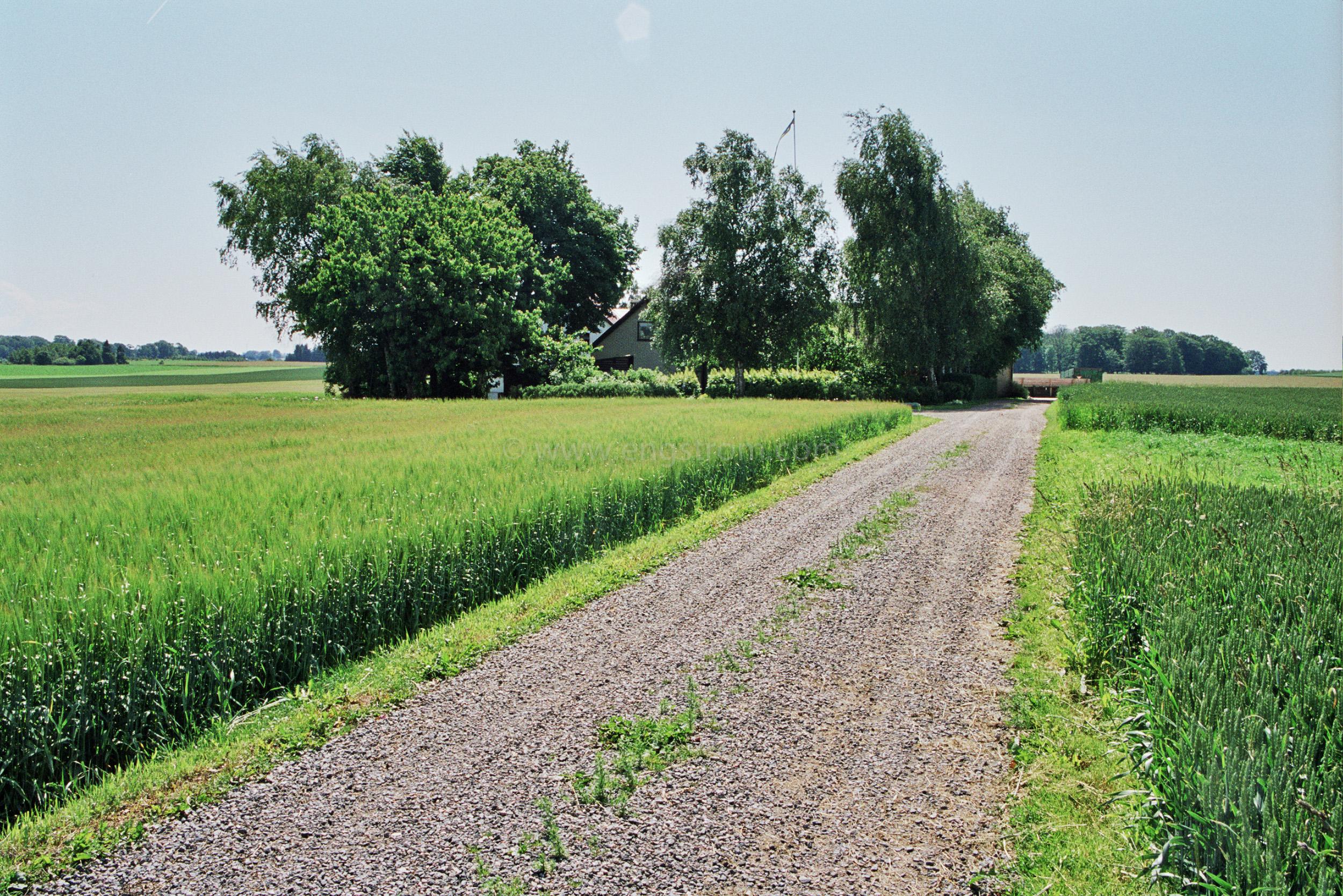 JE0310_12, Väg till gård i Skåne, Jonas Engström