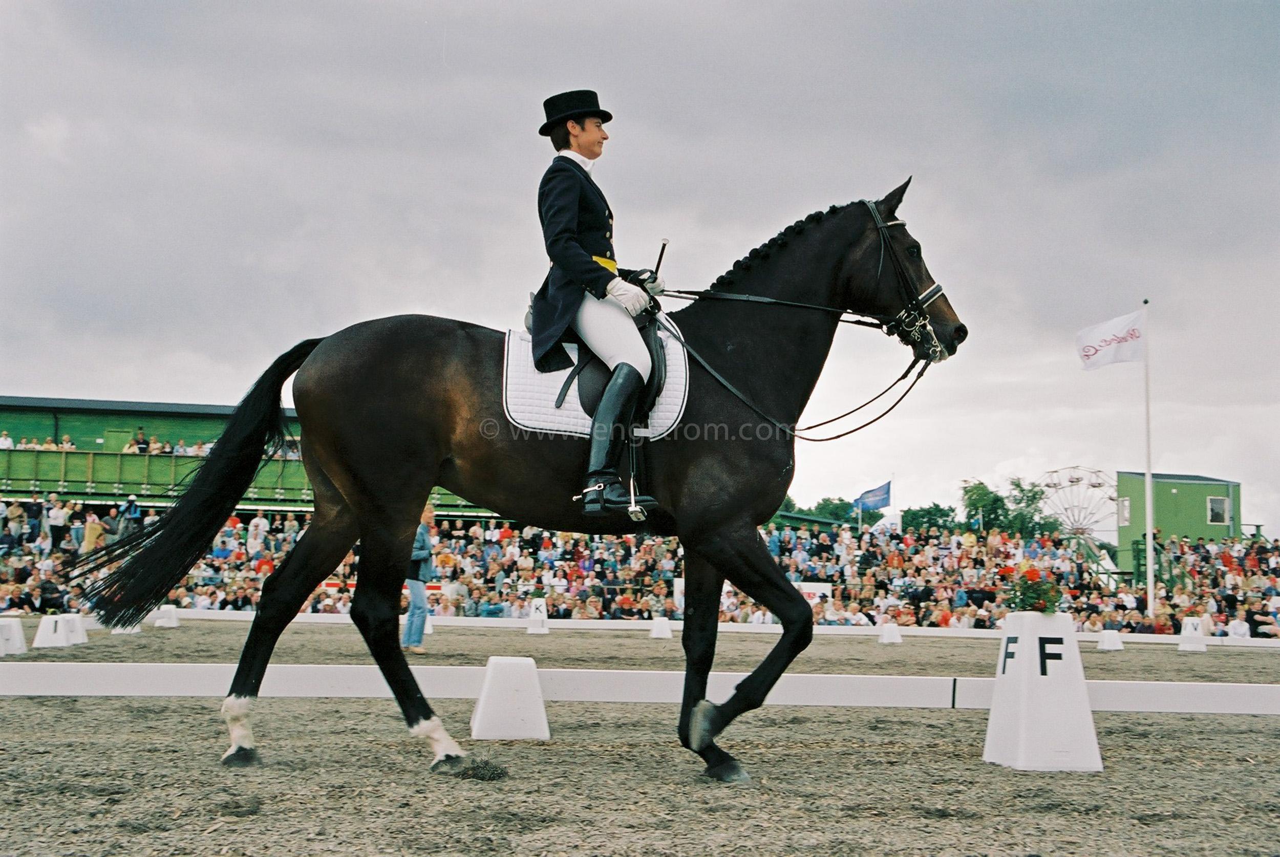 JE0314_07, Dressyrhäst på Falsterbo horseshow, Jonas Engström