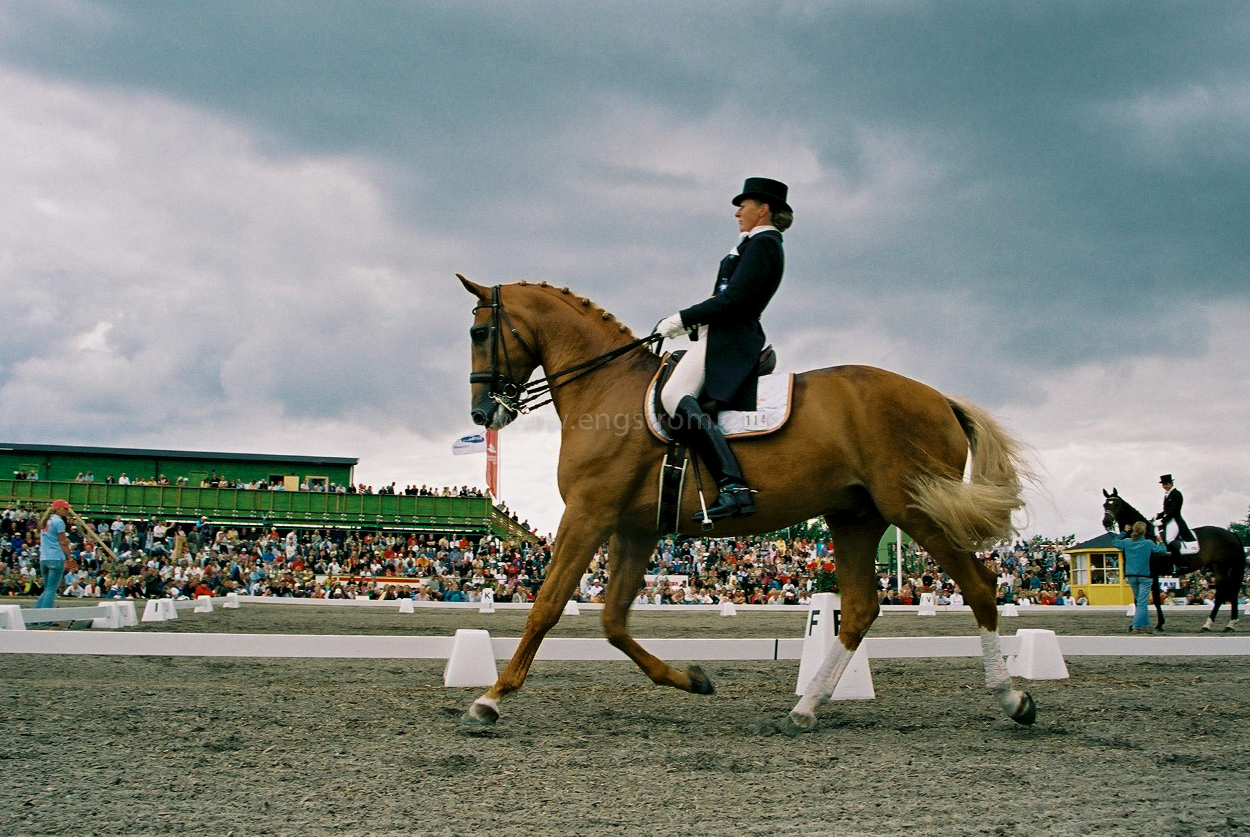 JE0314_08, Dressyrhäst i trav på Falsterbo horseshow, Jonas Engström