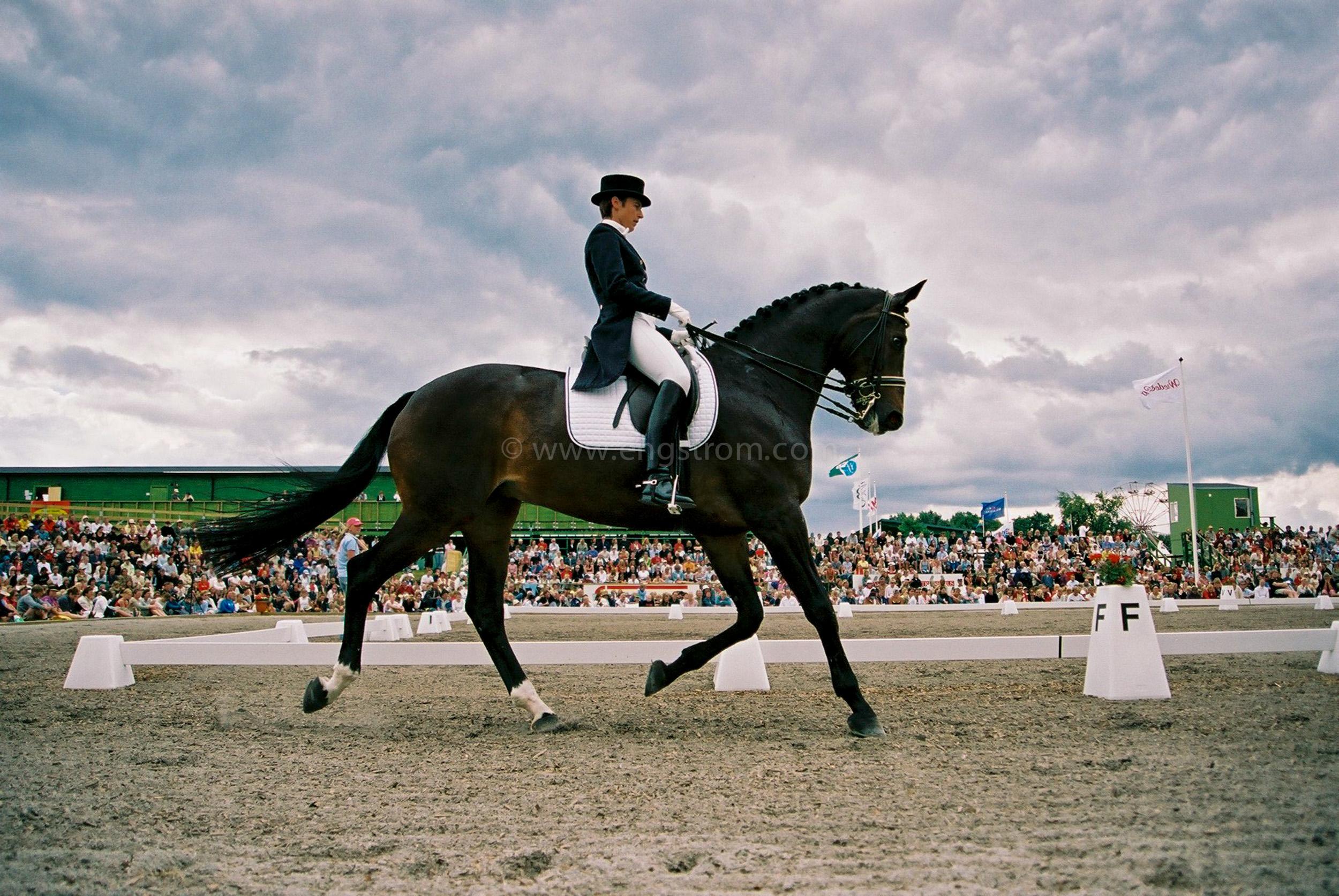 JE0314_10, Dressyrhäst i trav på Falsterbo horseshow, Jonas Engström