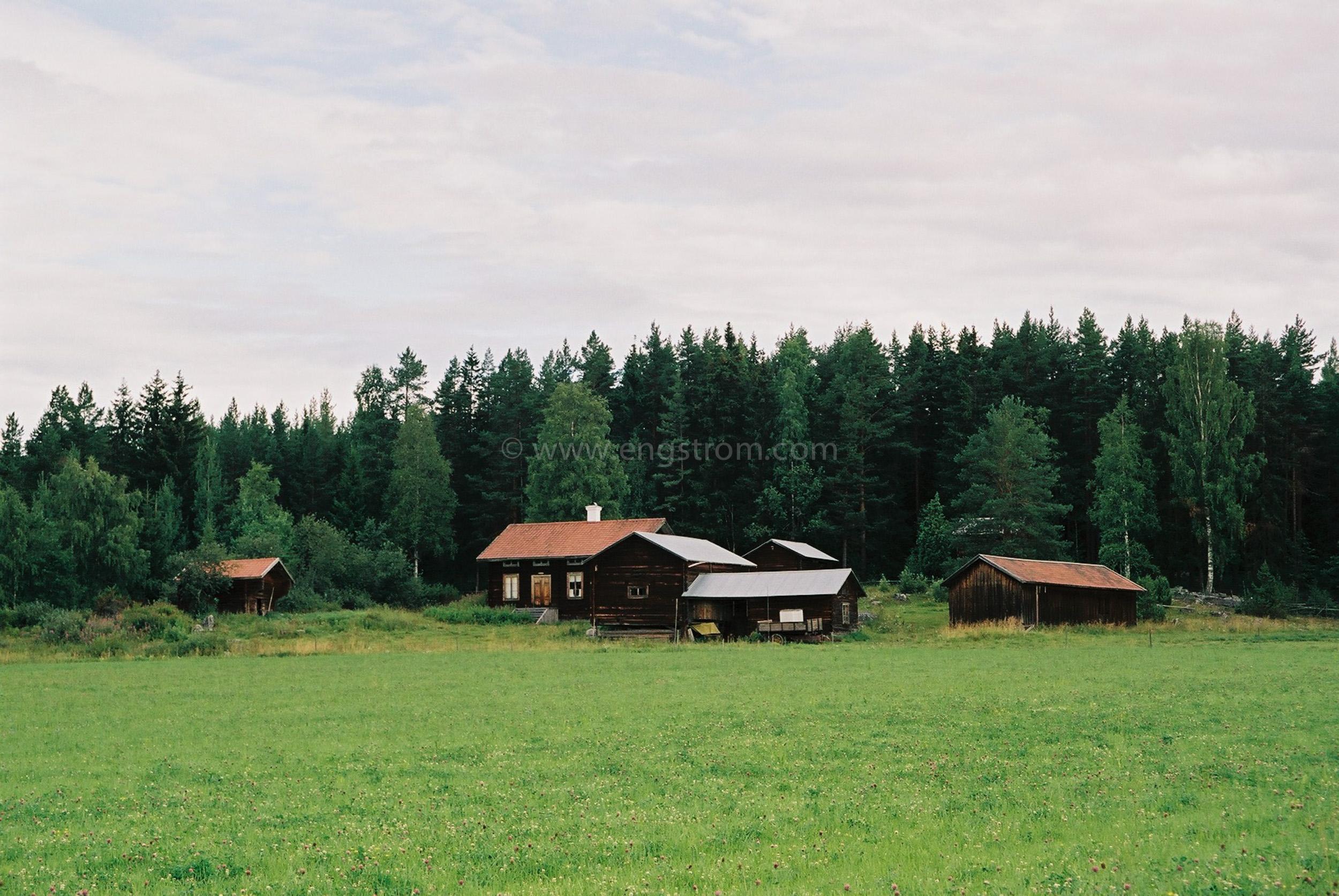 JE0321_21, Finngården Ranvall med skog i bakgrunden, Jonas Engström