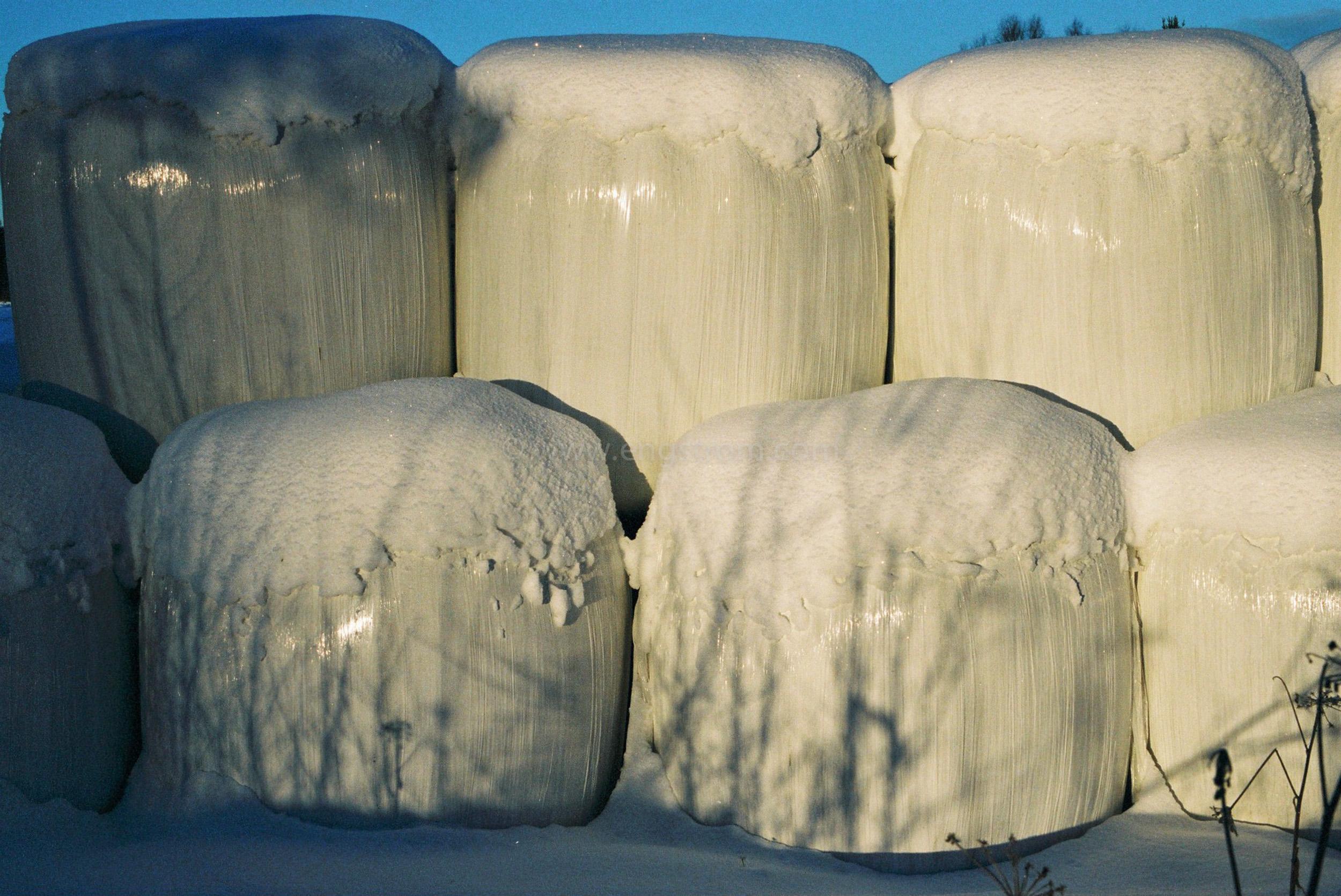 JE0400_045, Ensilagebalar på vintern. Hälsingland vintern 2004, Jonas Engström