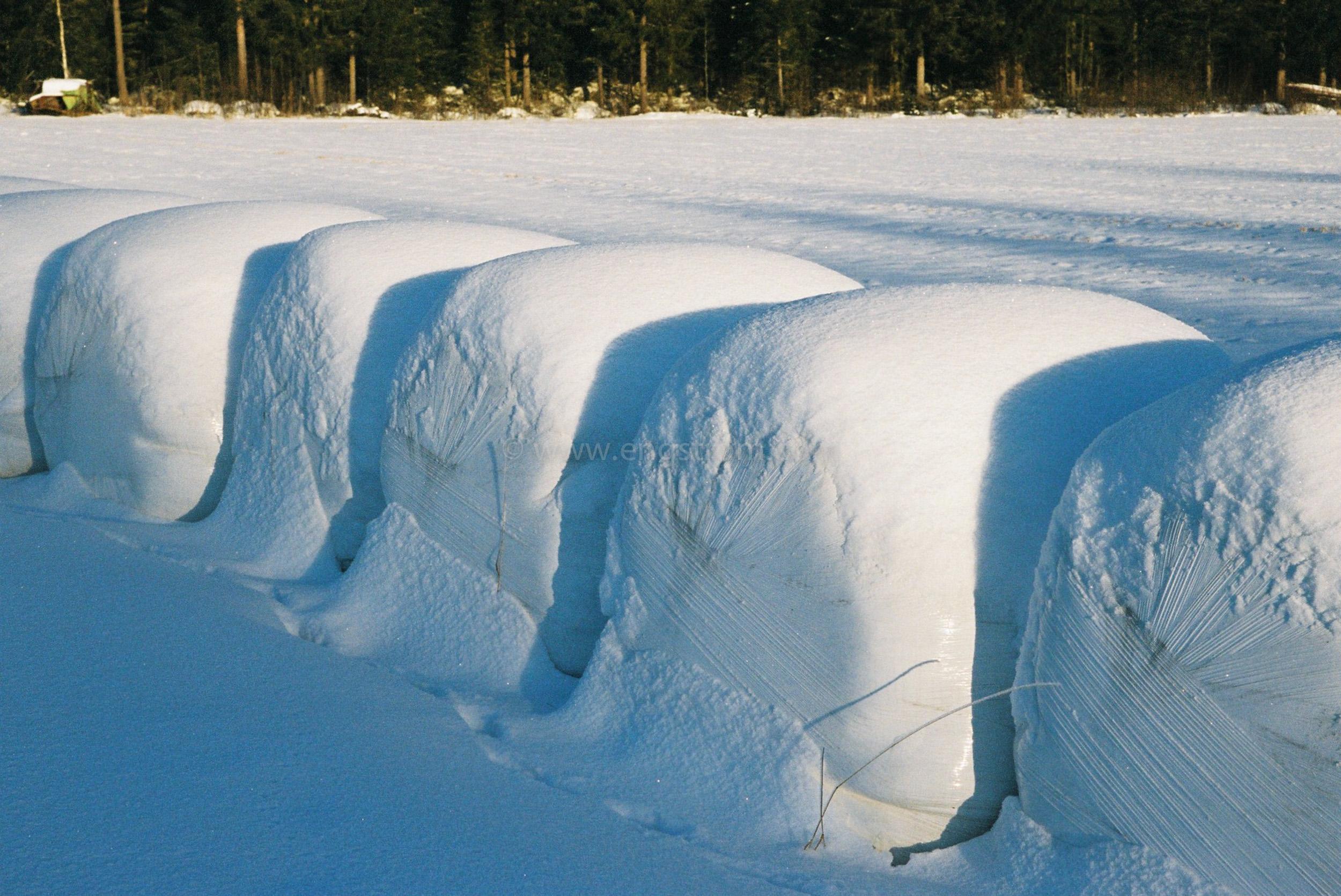 JE0400_047, Ensilagebalar på vintern. Hälsingland vintern 2004, Jonas Engström