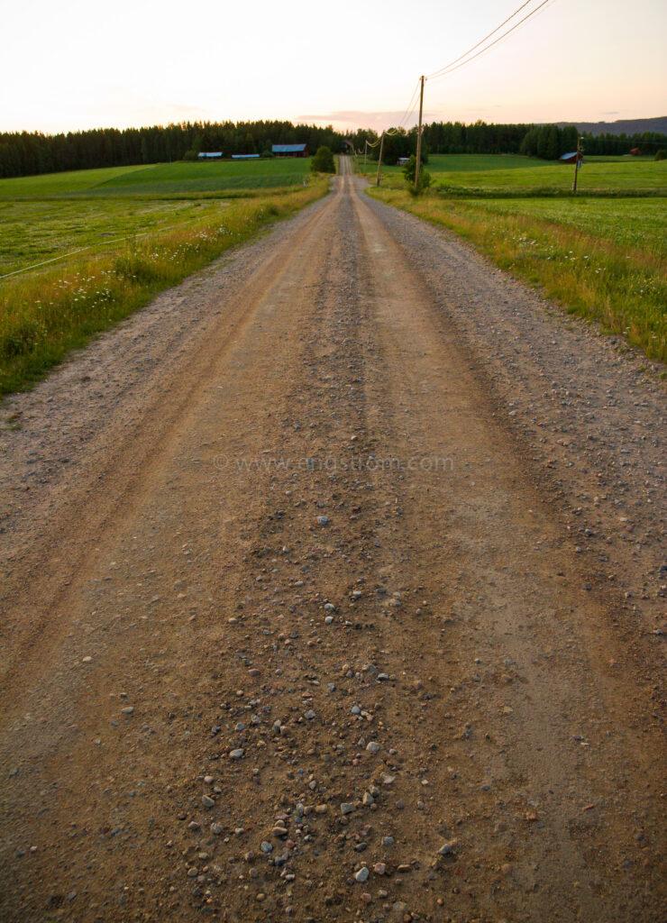 JE_11525, Grusvägen till hyttebo i kvällsljus, Jonas Engström