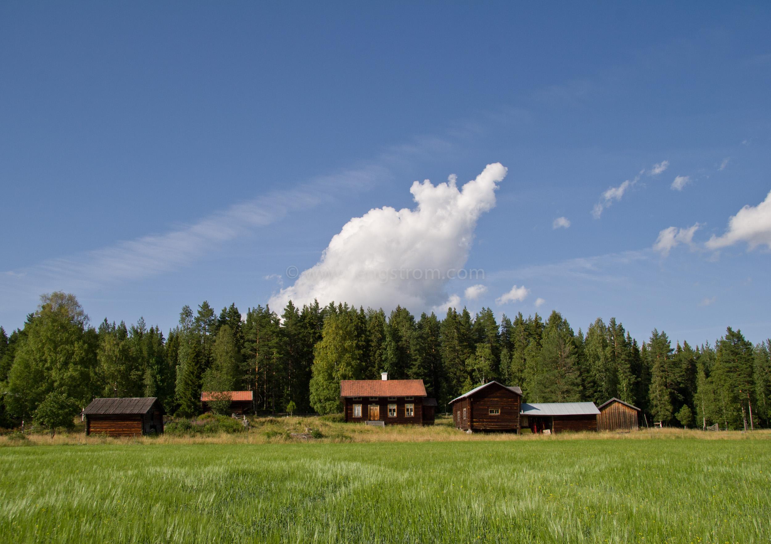 JE_11754, Vacker Hälsingegård i skogsbrynet, Jonas Engström