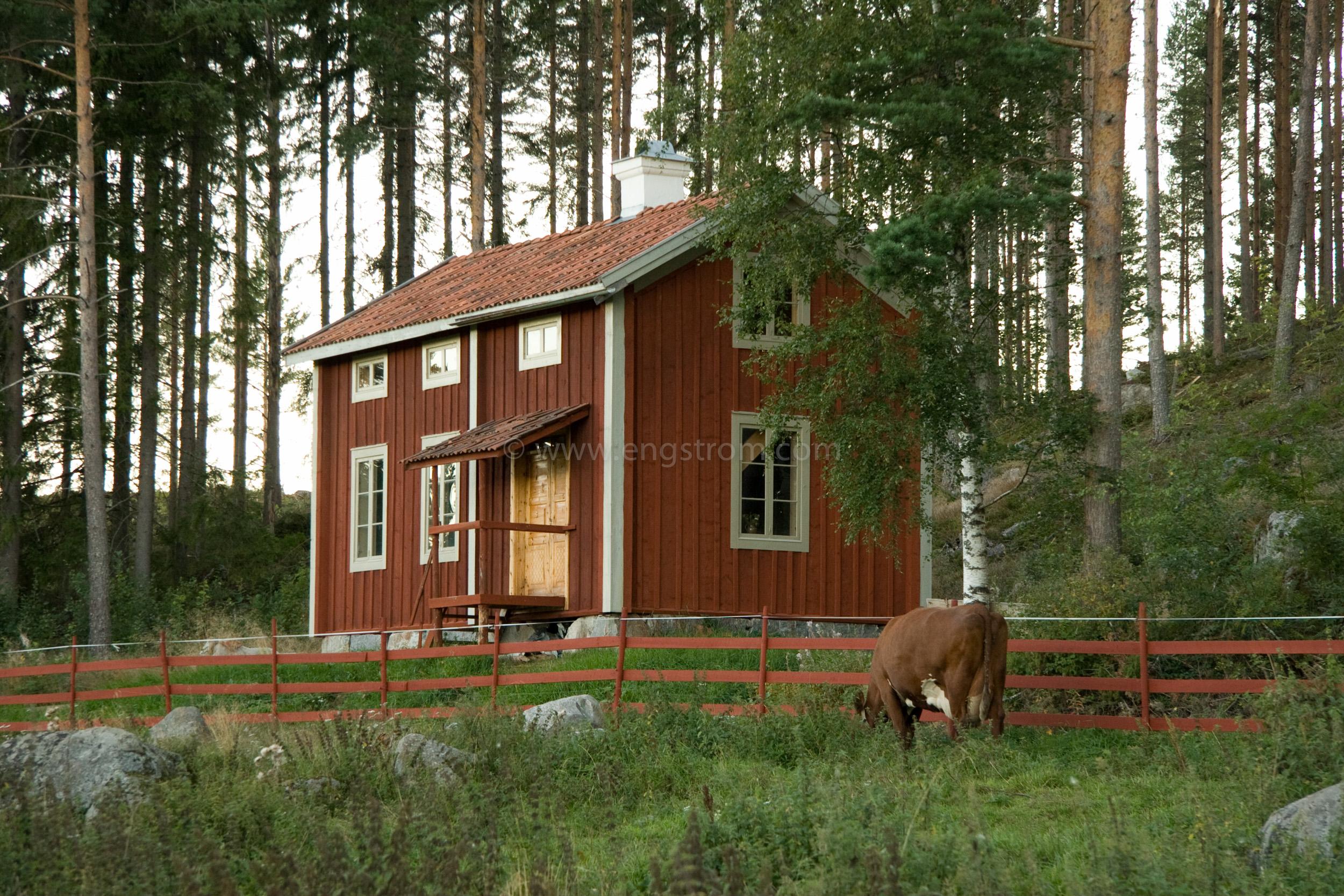 JE_20091, Den nybyggda stugan i skogskanten, Jonas Engström