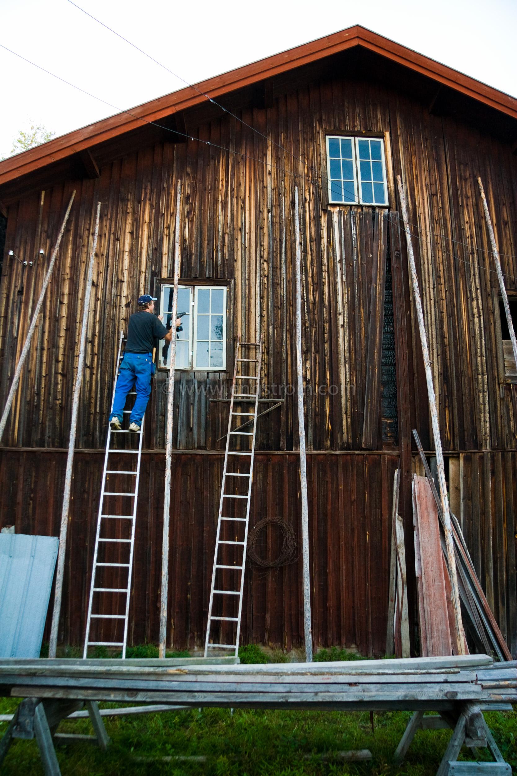 JE_20108, Staffan på stege för att sätta i nya  fönster i kvarnen i Stocksbo., Jonas Engström