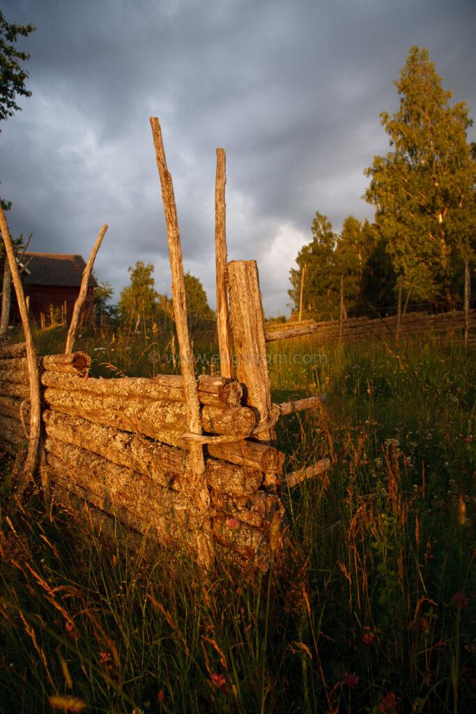 JE_20110707-201514, Gärdesgård i kvällssol, Jonas Engström