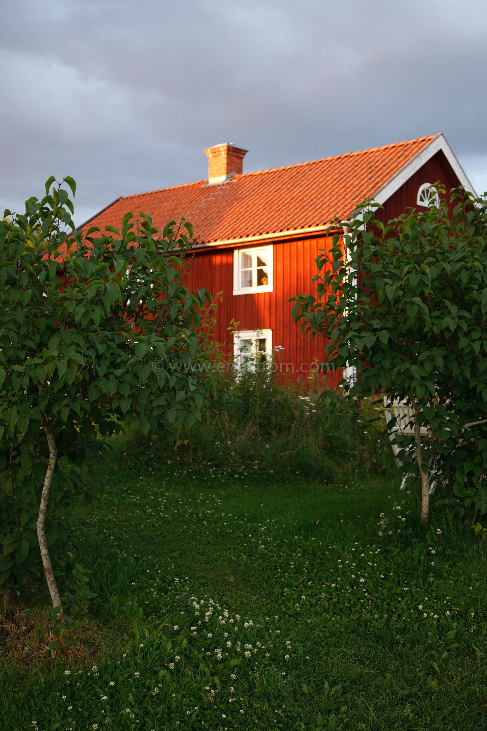 JE_20110707-201716, Rött hus med vita knutar i kvällssol, Jonas Engström