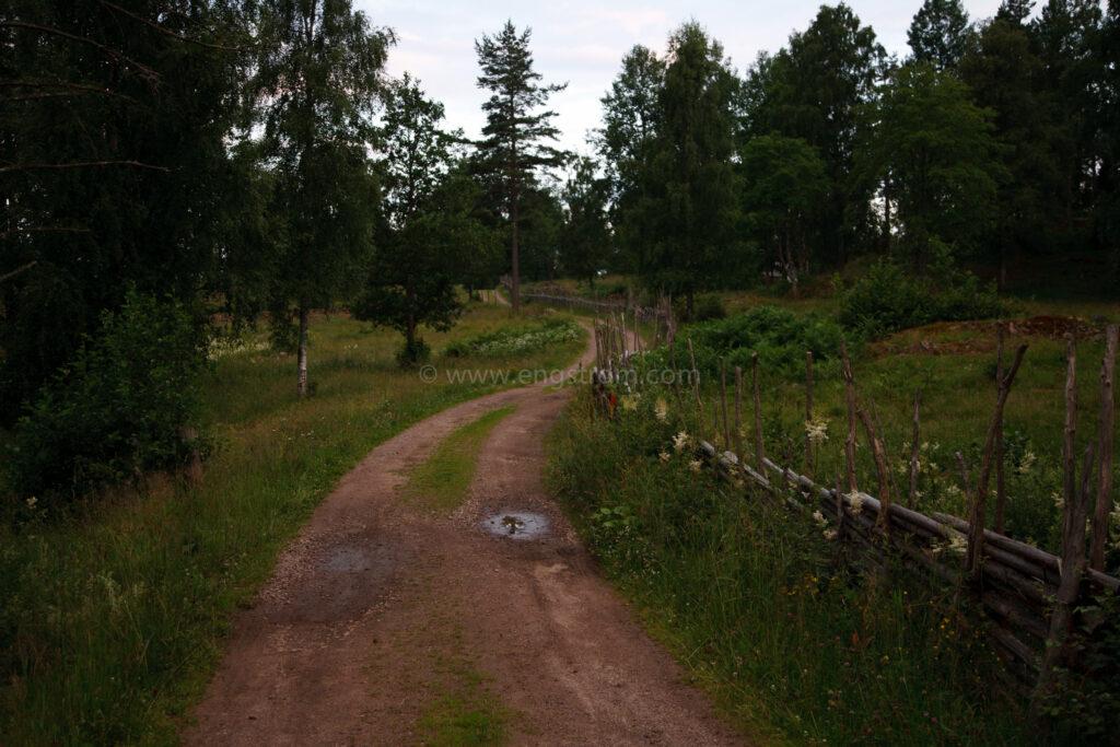 JE_20110707-203431, Grusväg genom odlingslandskap med beten på var sida, Jonas Engström