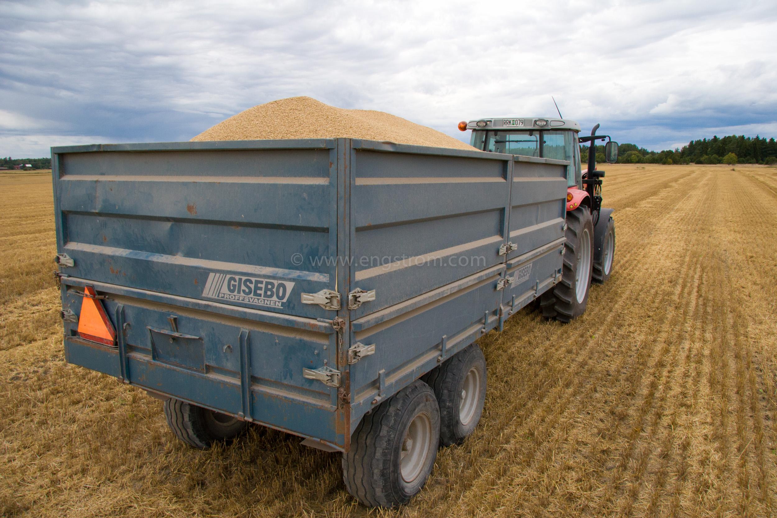 JE_20805, Traktor med spannmålsvagn på tröskad åker, Jonas Engström