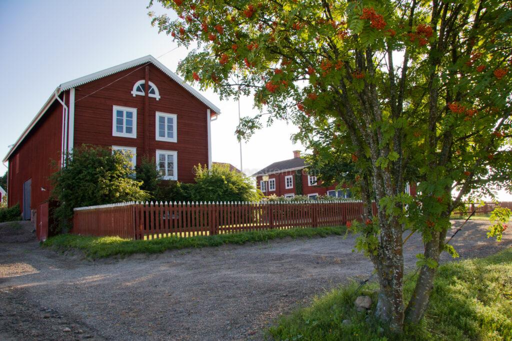JE_5367, Delsbogård med rönn framför., Jonas Engström