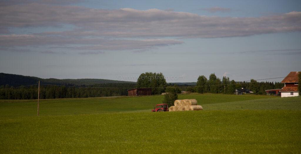 JE_65046, Lass med rundbalar, Jonas Engström