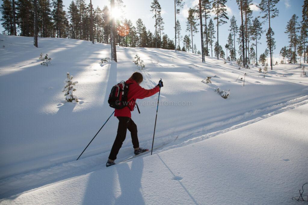 JE_72051, Skidåkning i skog i vinterskrud, Jonas Engström