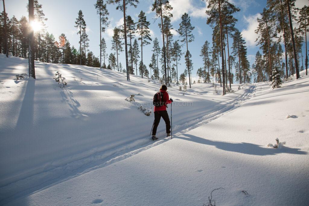JE_72054, Skidåkning i skog i vinterskrud, Jonas Engström