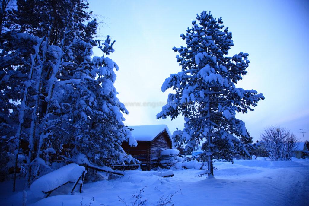 JE_84214, Blåkall vintermorgon, Jonas Engström